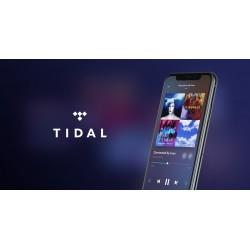 Acheter des plays Tidal